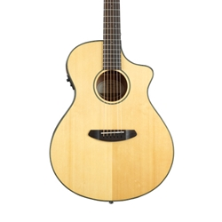 Breedlove Acoustic Electric Discovery Concert